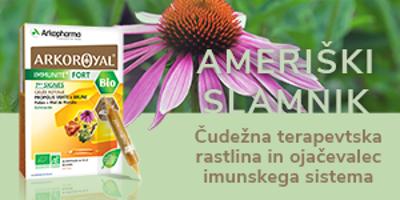 Ameriški slamnik: Čudežna terapevtska rastlina in ojačevalec imunskega sistema